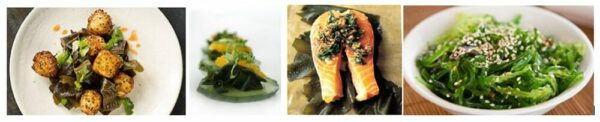 wakame composition 1