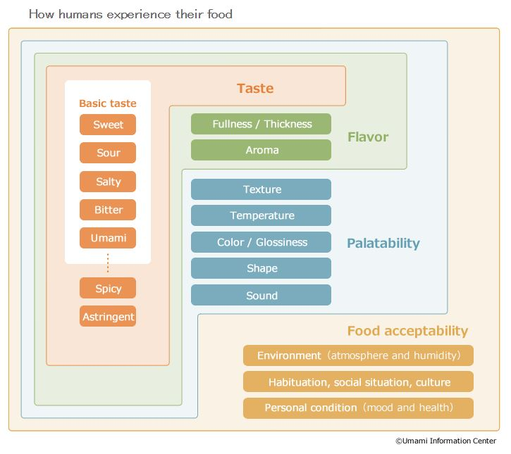 How Humans Experience food