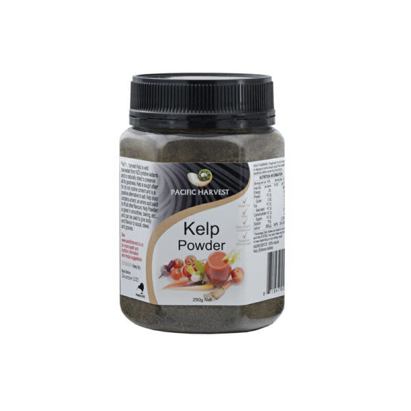 plain kelp powder NZ